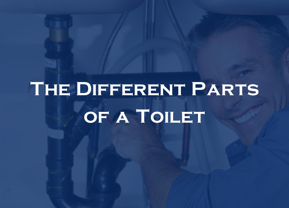 The Different Parts of a Toilet